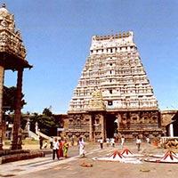 Mahabalipuram - Kanchipuram - Pondicherry - Tanjore - Trichy - Madurai - Thekkady - Alleppey - Cochin - Bangalore - Hassan - Mysore - Bangalore