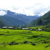 Phuntsholing - Thimphu - Punakha - Wangdue - Paro - Dooars