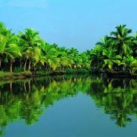 Wayanad (Vythiri) - Athirappilly - Munnar - Thekkady - Kumarakom - Alleppey - Kovalam