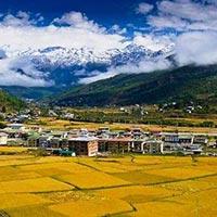 Paro - Thimphu - Punakha - Gangtey - Bumthang