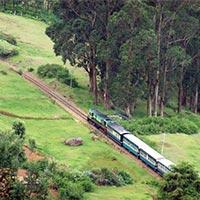 Mysore - Ooty - Coonoor