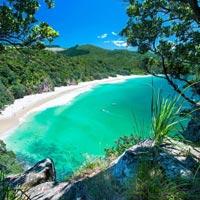 Auckland - Rotorua - Lake Taupo - Turangi - Wellington - Kaikoura - Christchurch - Queenstown - Glacier Region