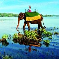 Colombo - Dambulla - Kandy - Nuwara Eliya - Bentota - Colombo