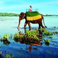Colombo - Pinnawala - Kandy - Nuwara Eliya - Colombo