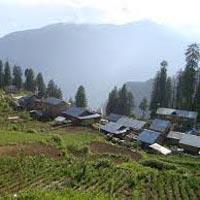 Manali - Solang Valley - Manali - Gulaba - Sethan Village - Manali