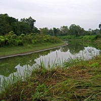 Kaziranga - Shillong - Guwahati
