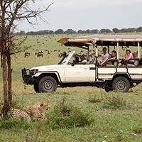 Maasai Mara - Mara Bushtops