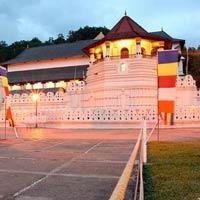 Madurai - Rameswaram - Colombo - Negombo - Trincomalee - Kandy - Nuwara Eliya