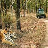 New Delhi - Jaipur - Agra - Jabalpur - Kanha - Bandhavgarh - Khajuraho - Varanasi - Kathmandu - Chitwan - Lumbini - Pokhra - Kathmandu - New Delhi
