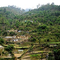 Delhi - Mussoorie - Haridwar - Nainital - Ranikhet - Kausani - Corbett