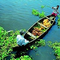Delhi - Thiruvananthapuram - Kovalam - Kollam - Alleppey - Periyar - Munnar - Cochin - Mumbai