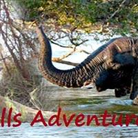Okavango Delta - Chobe - Nata - Botswana - Victoria Falls Zimbabwe