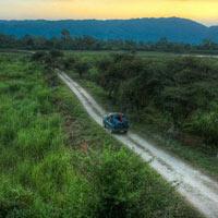 Shillong - Cherrapunji - Kaziranga - Guwahati
