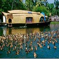 Trivandrum - Kovalam