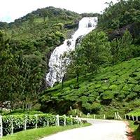Cochin - Munnar - Periyar