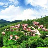 Delhi - Bangalore - Nagarhole - BR Hills - Bandipur - Ooty - Munnar - Eravikulam - Periyar - Kumarakom - Kochi