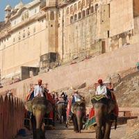 Delhi - Varanasi - Khajuraho - Bandhavgarh - Kanha - Jabalpur - Agra - Fatehpur Sikri - Ranthambore - Jaipur - Delhi