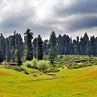 Srinagar - Sonamarg - Yousmarg - Gulmarg - Pahalgam