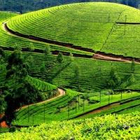 Coimbatore - Ooty - Coonoor - Kodaikanal