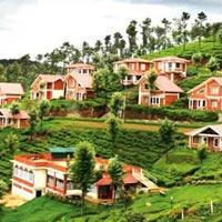 Bangalore - Tirupati - Mysore - Ooty