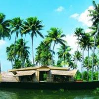 Cochin(Kochi) - Munnar - Ooty - Coimbatore