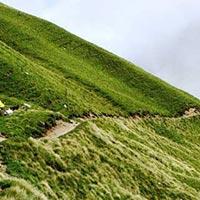 Kathgodam - Lohajung - Wan - Geroli Patal - Bedni Bugyal - Patar Nachauni - Bagubasa