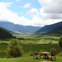 Paro - Thimphu - Punakha