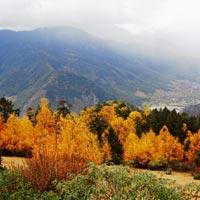 Paro - Punakha - Gangtey - Trongsa - Bumthang - Mongar - Trashigang - Samdrup Jongkhar.