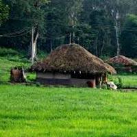 Kozhikode - Wayanad - Kozhikode