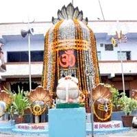 Dwarka - Bet Dwarka - Nageswar Jyotirling - Porbandar - Somnath - Diu - Sasan Gir Forest - Junagadh - Virpur - Gondal