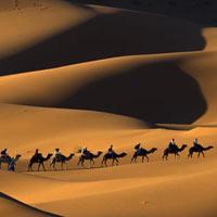 Marrakech - Merzouga - Ouarzazate
