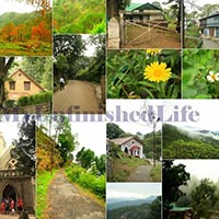 Kasauli - Chail - Shimla - Naldhera - Manali - Rohtang Pass