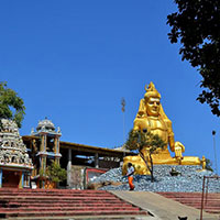 Dambulla - Sigiriya - Trincomalee - Passikudah - Kandy - Pinnawala - Colombo