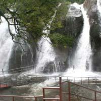 Bangalore - Mysore - Wayanad - Ooty - Kodaikanal - Madurai