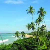 Mumbai - Colombo - Anuradhapura - Trincomalee - Kandy - Nuwara Eliya - Galle