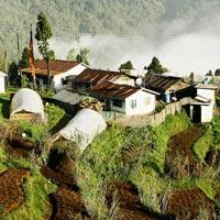 Kalimpong - Yuksom - Temi - Gangtok