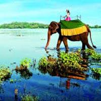Colombo - Sigirya - Kandy - Dambulla - Nuwara Eliya - Kithulgala - Katunayake - Colombo