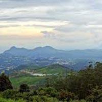 Guwahati - Kaziranga National Park