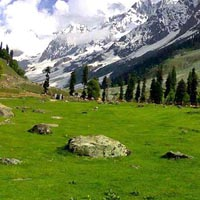 Srinagar - Sonamarg - Srinagar