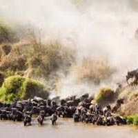 Tsavo National Park - Amboseli - Samburu National - Aberdares National Park - Lake NakuruNational Reserve