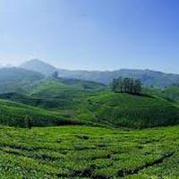 Madurai - Rameswaram - Kanyakumari - Trivandrum - Varkala - Alleppey - Cochin - Guruvayur - Munnar - Munnar