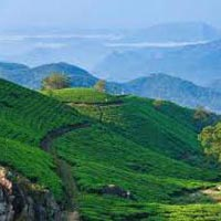 Madurai - Rameswaram - Kanyakumari - Trivandrum - Varkala - Alleppey - Cochin - Guruvayur - Athirappilly - Munnar - Munnar