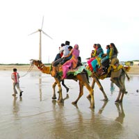 Mandvi - Indo - Pak