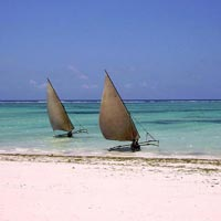 Girrafe Manor - Masai Mara - Nakuru National Park - Lake Manyara - Ngoro ngoro creator - Serengeti - Zanzibar Beach