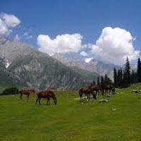 Srinagar - Sonmarg - Gulmarg - Pahalgam - Srinagar