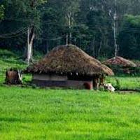 Kozhikode - Wayanad