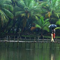 Guruvayur - Cochin - Munnar - Alleppey - Trivandrum