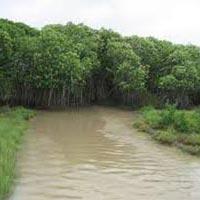 Raipur - Kanker - Jagdalpur - Chitrakoot - Koraput - Puri - Balaghat - Udayagiri