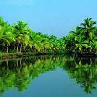 Cochin - Munnar - Periyar - Alleppey - Cochin