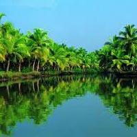 Cochin - Munnar - Thekkady - Alleppey - Kovalam - Cochin Drop